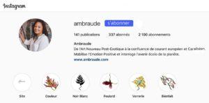 profil Instagram Ambraude Art-Création, de l'Art Nouveau Post Exotique, Art Floral Végétal Tropical, défense de la nature